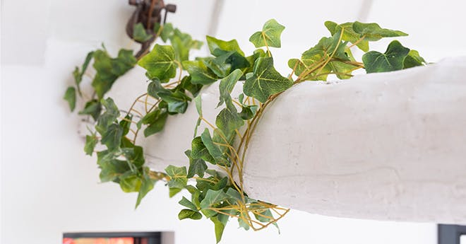 artificial trailing and bush ivy