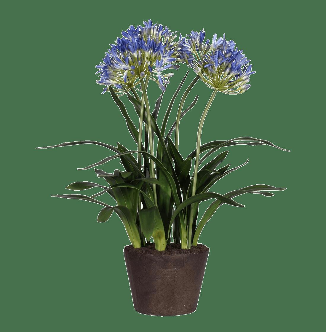 Artificial agapanthus flowering plant
