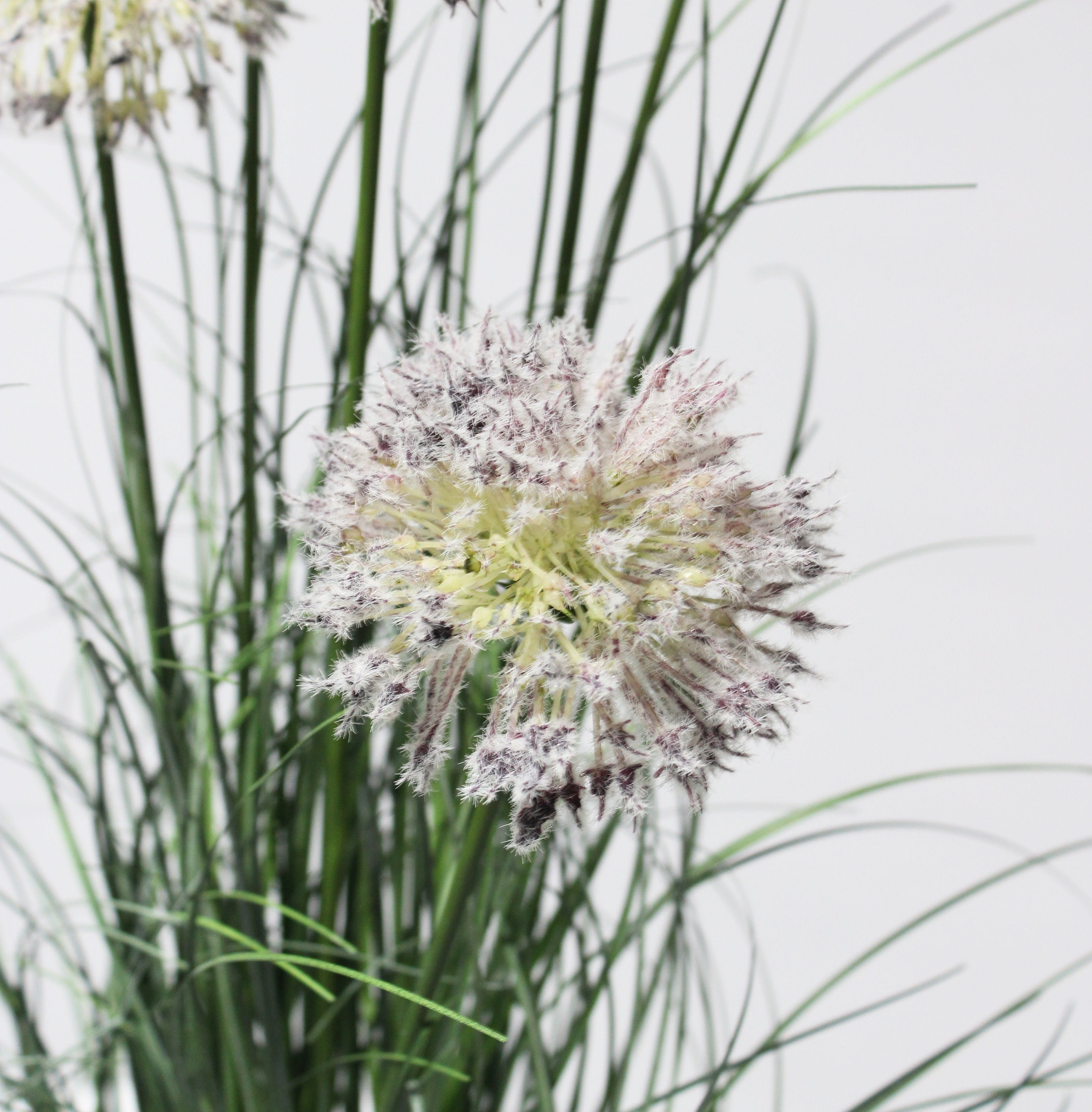 Artificial allium grass close up