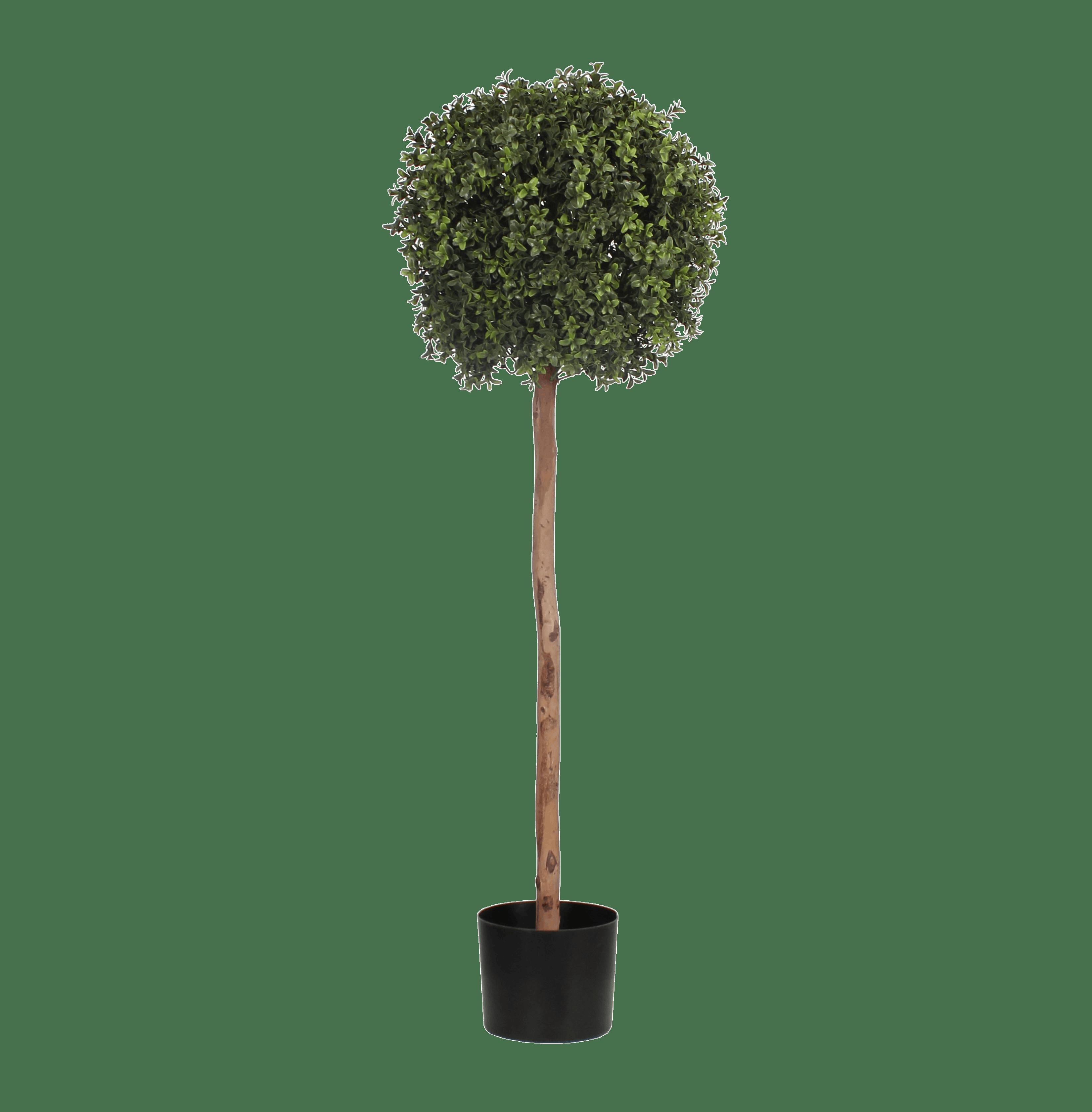 Artificial boxwood single ball tree