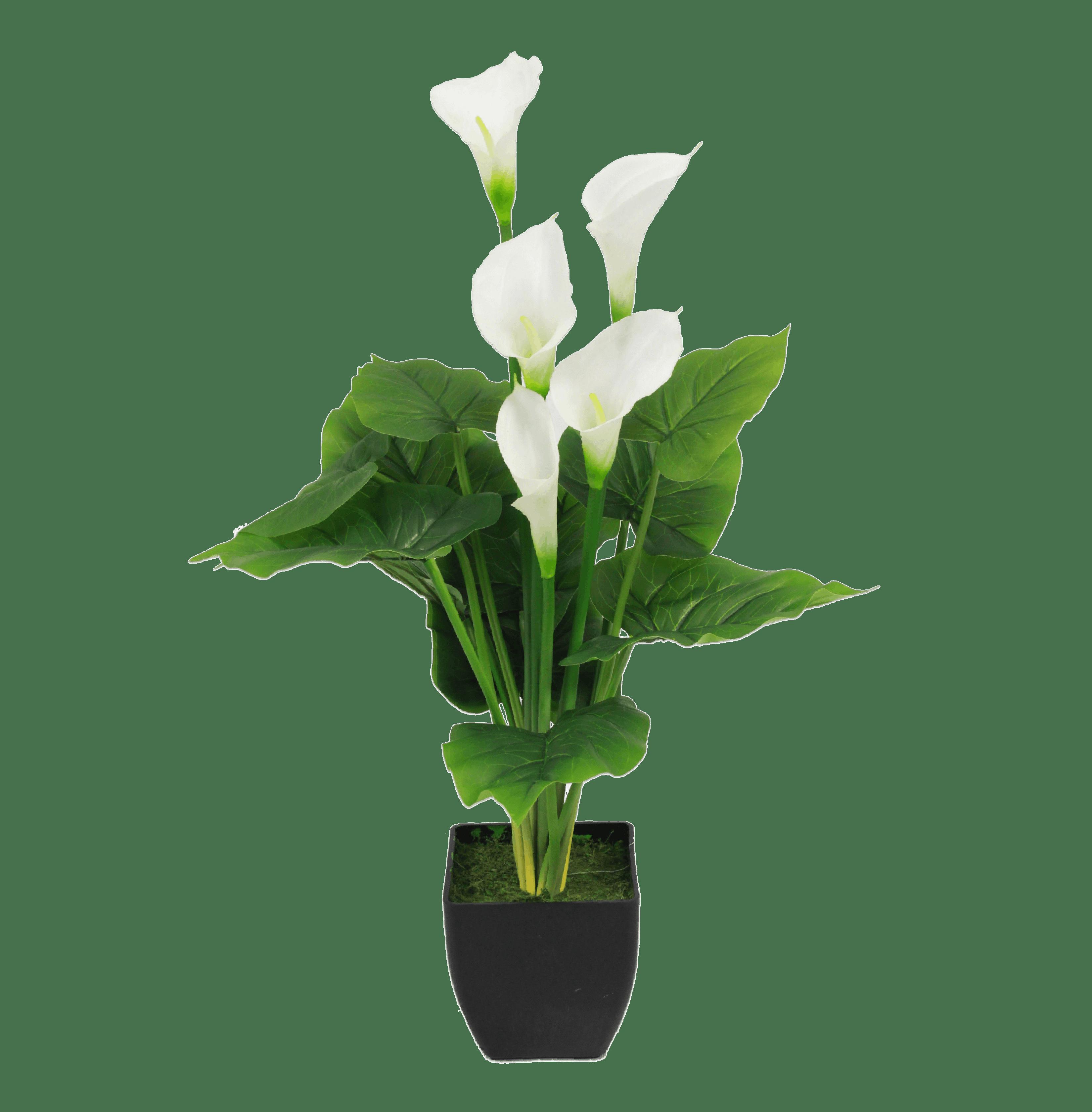 Artificial calla lily