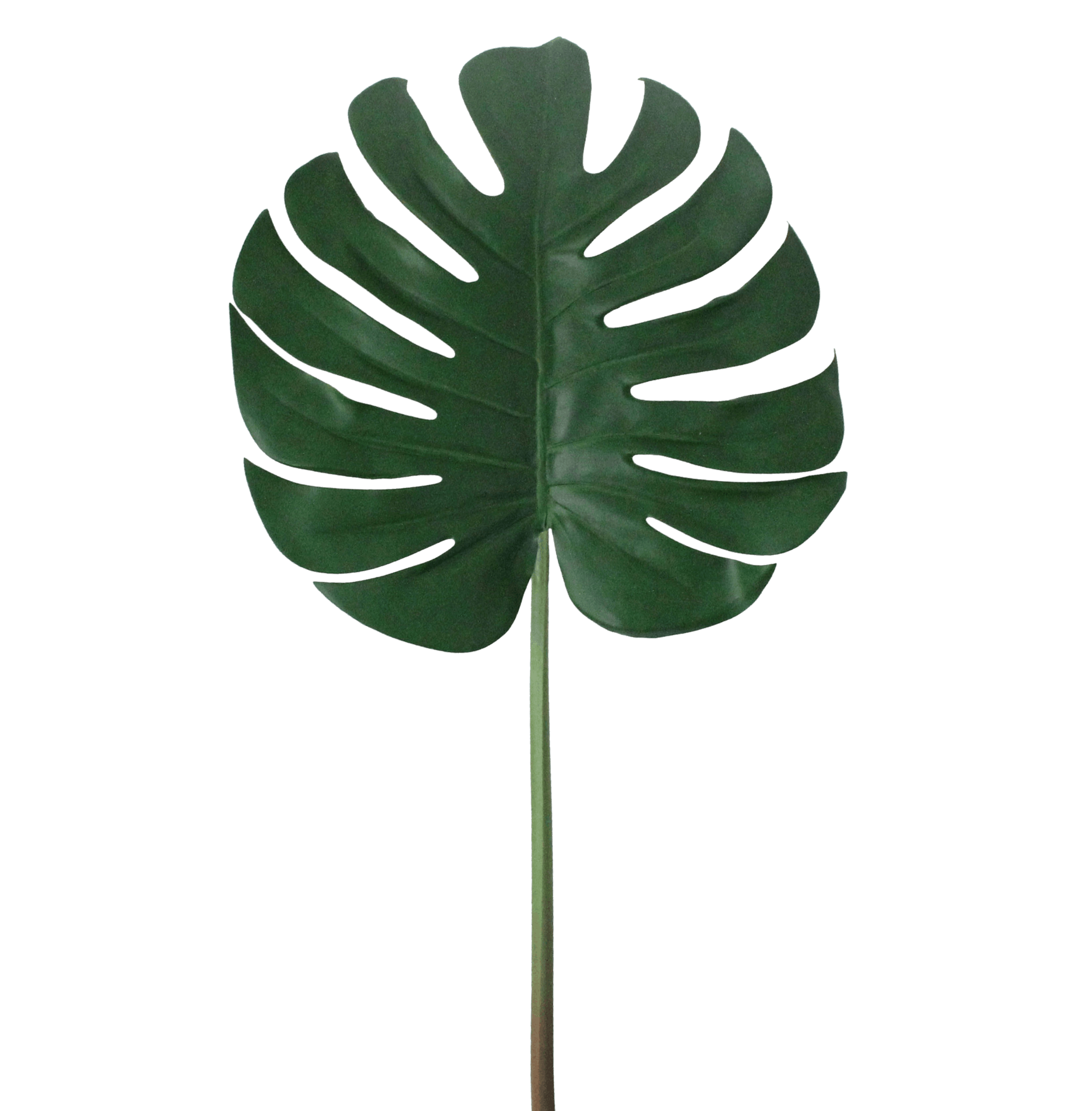 Artificial cheese plant leaf stem