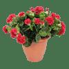 Artificial geranium patio planter red