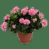Artificial geranium patio planter pink