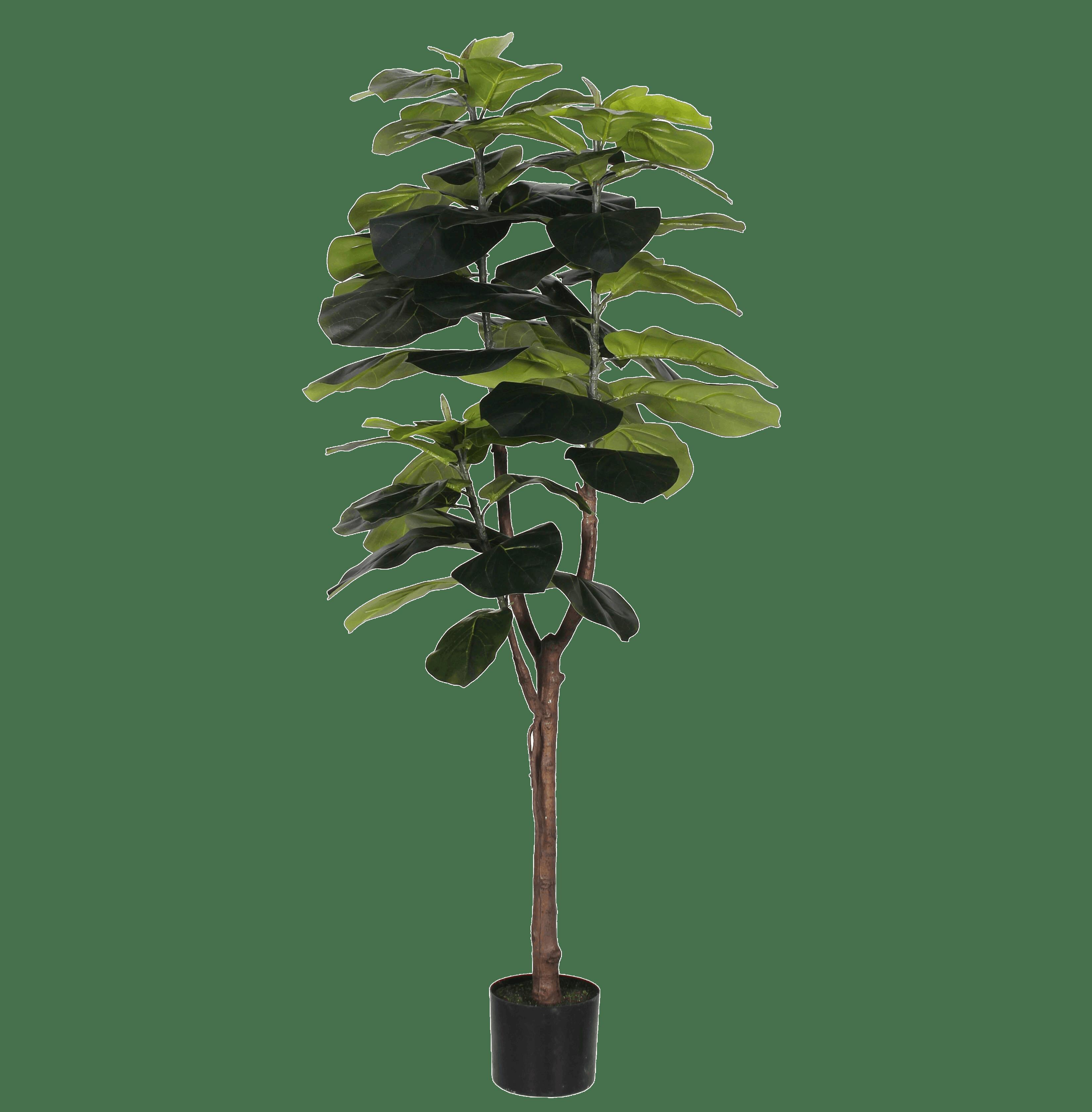 Artificial fiddle leaf fig 150cm