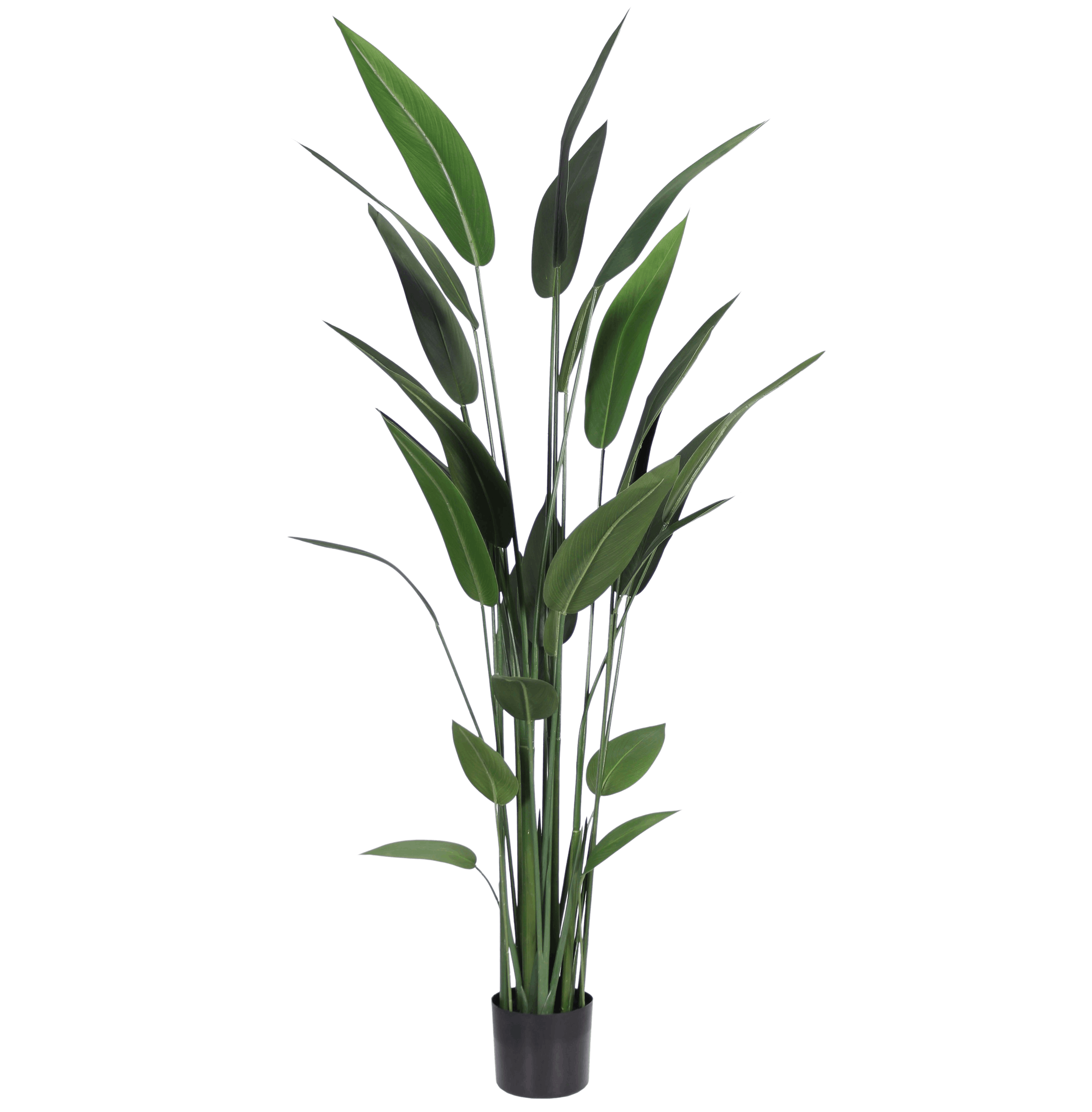 Artificial heliconia 180cm