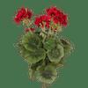 Artificial geranium bush red