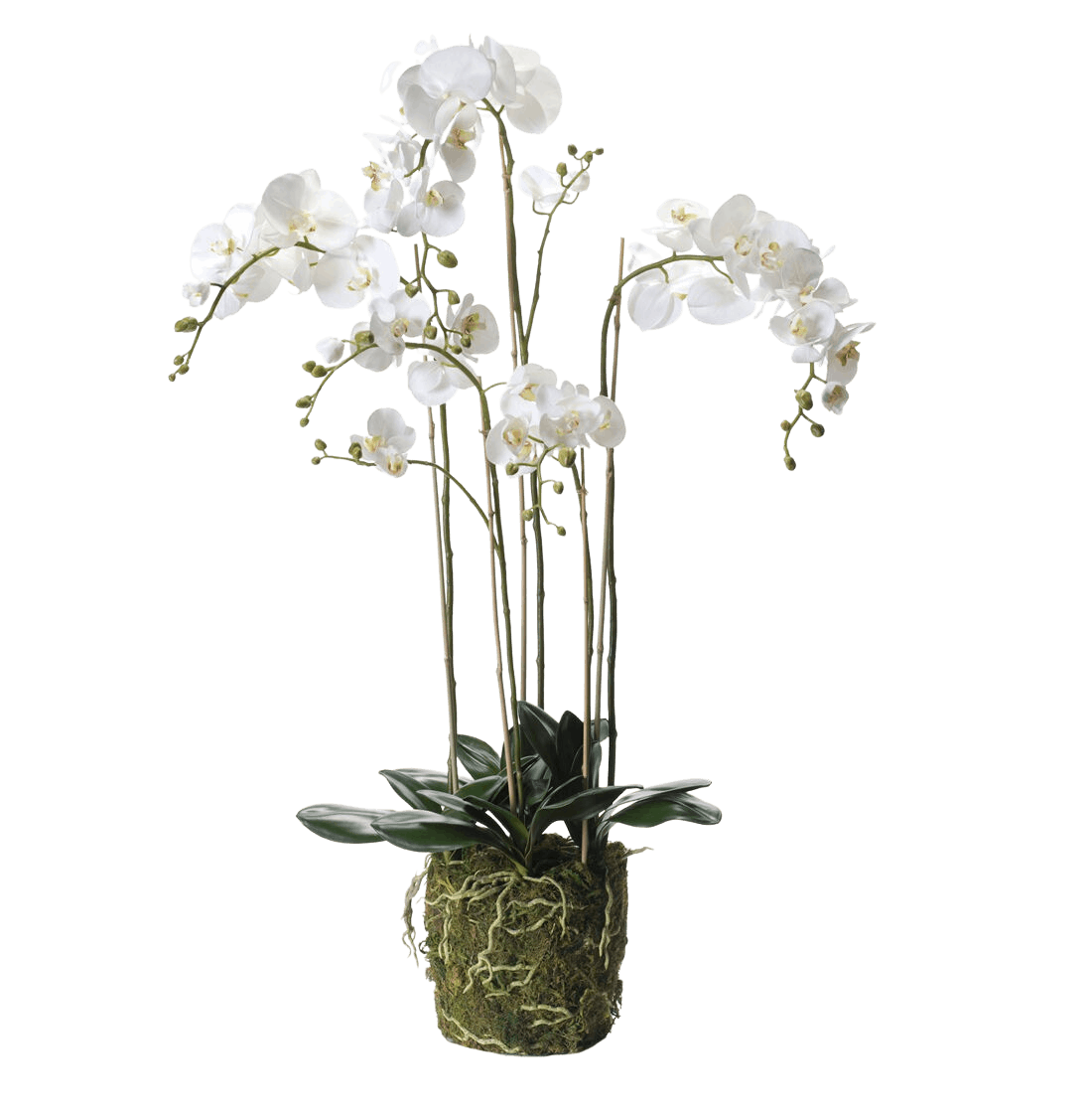 Artificial white moon phalaenopsis orchid 145cm