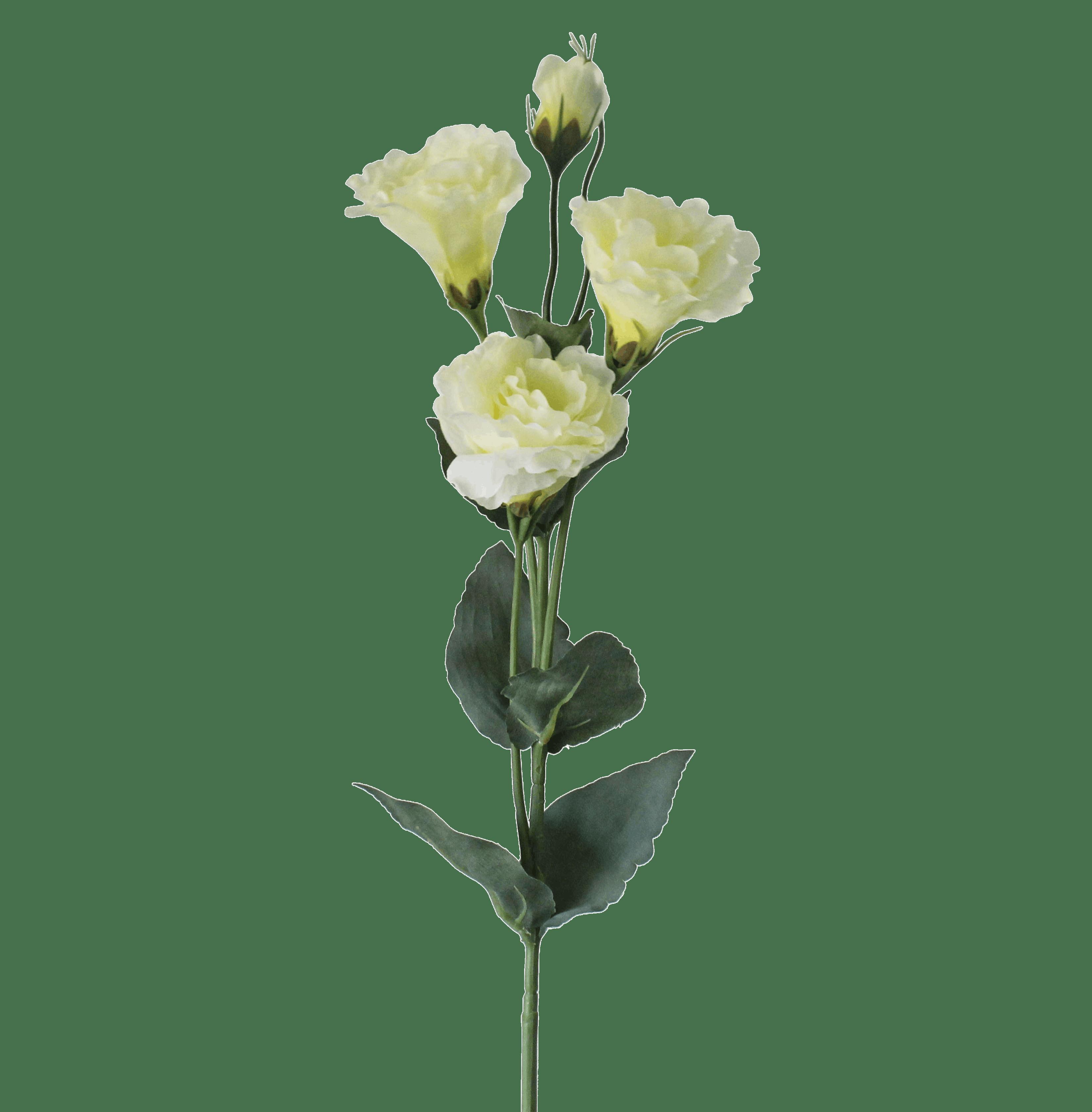Artificial lisianthus stem cream