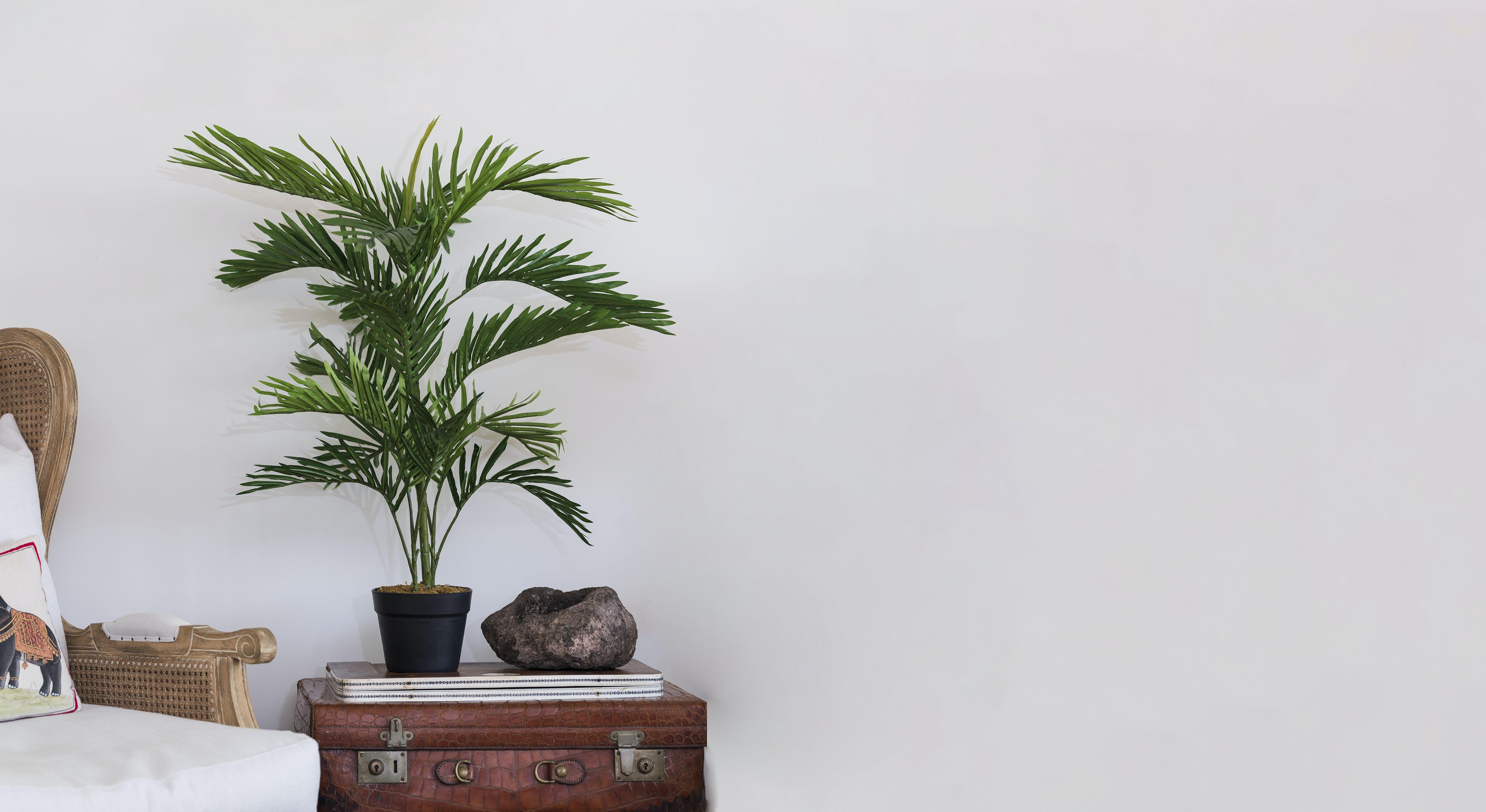 Artificial 90cm paradise palm on end table