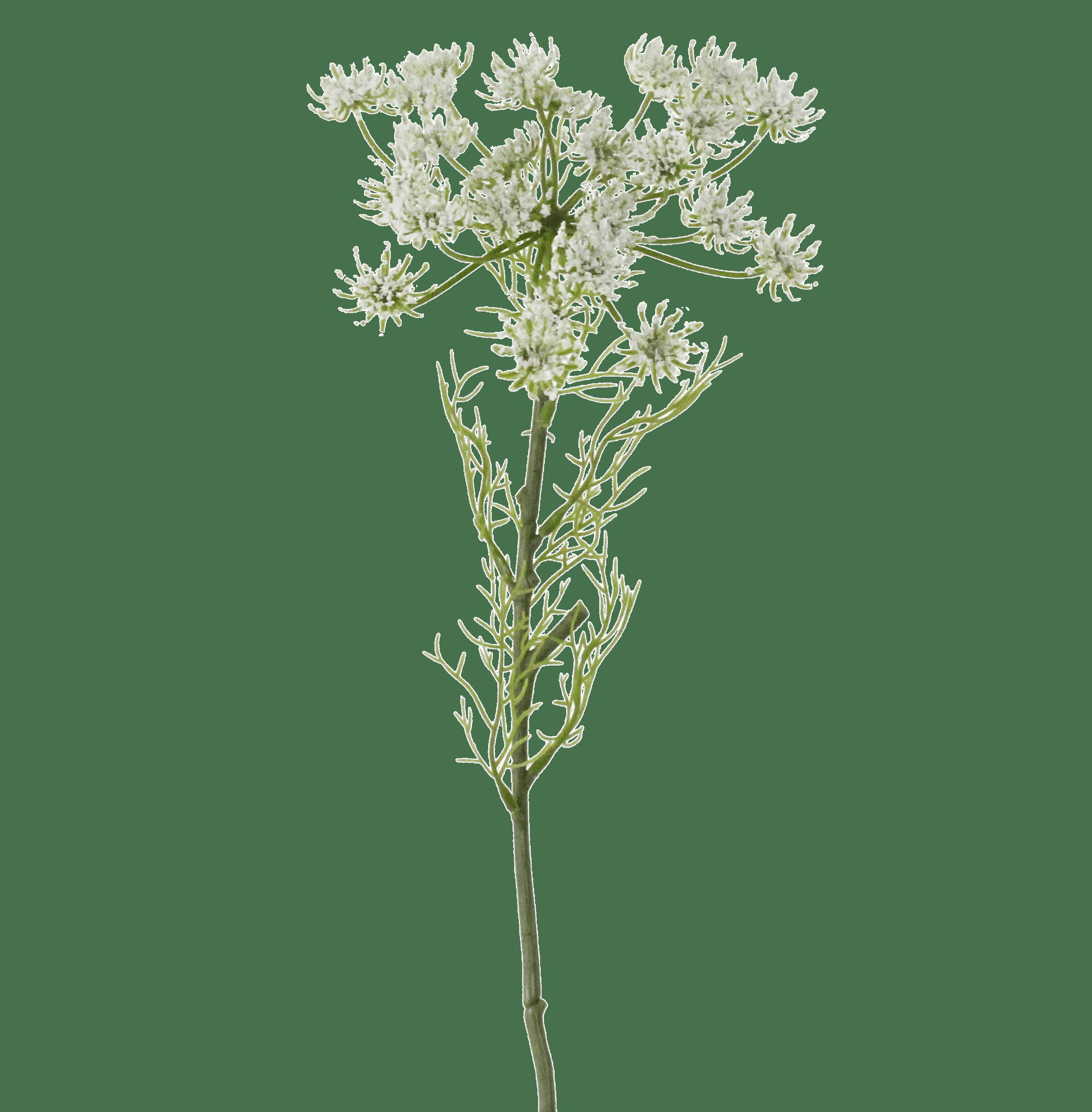 Artificial queen Anne's lace stem