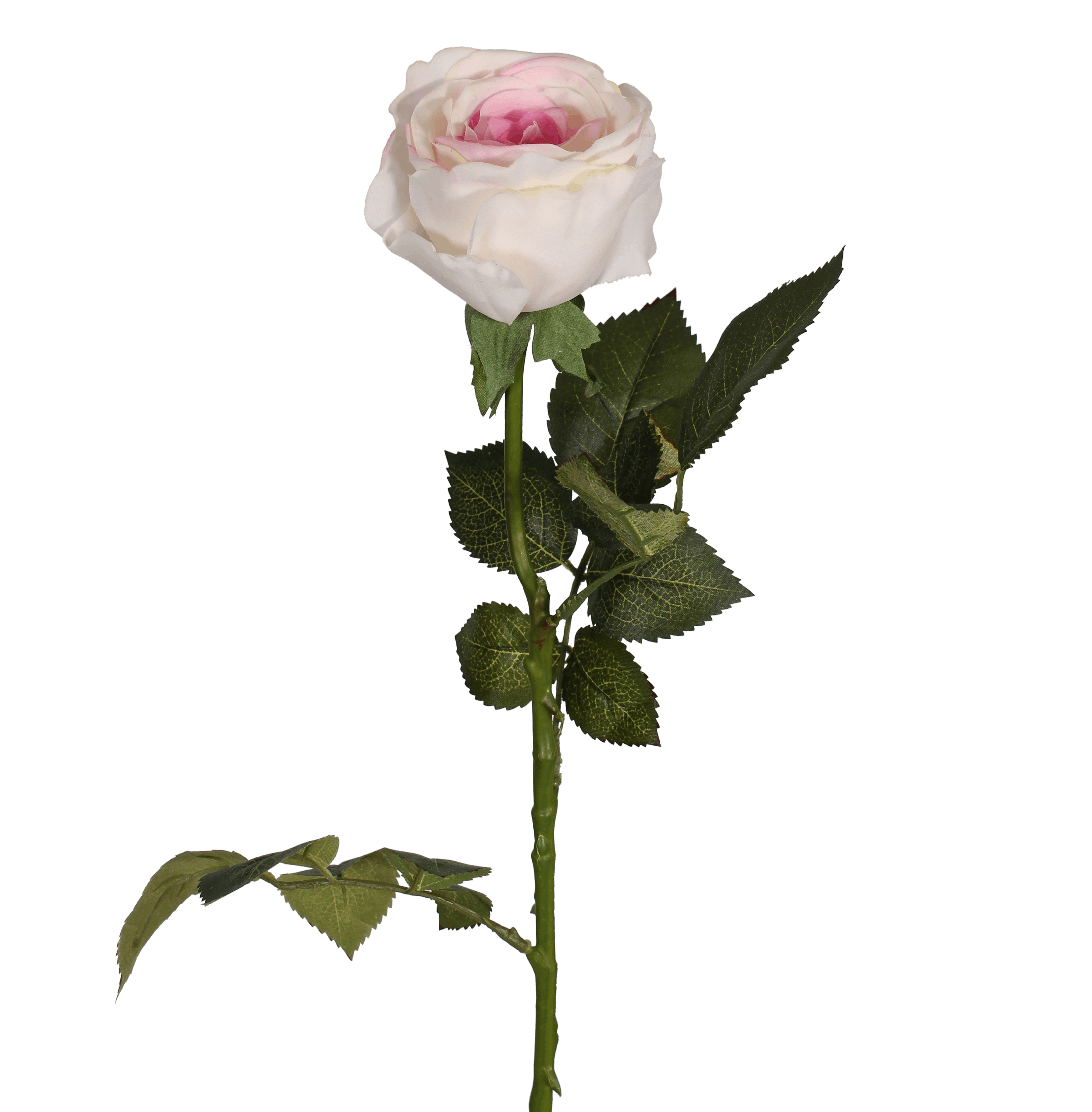 Artificial rose stem white/pink