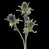 Artificial thistle stem