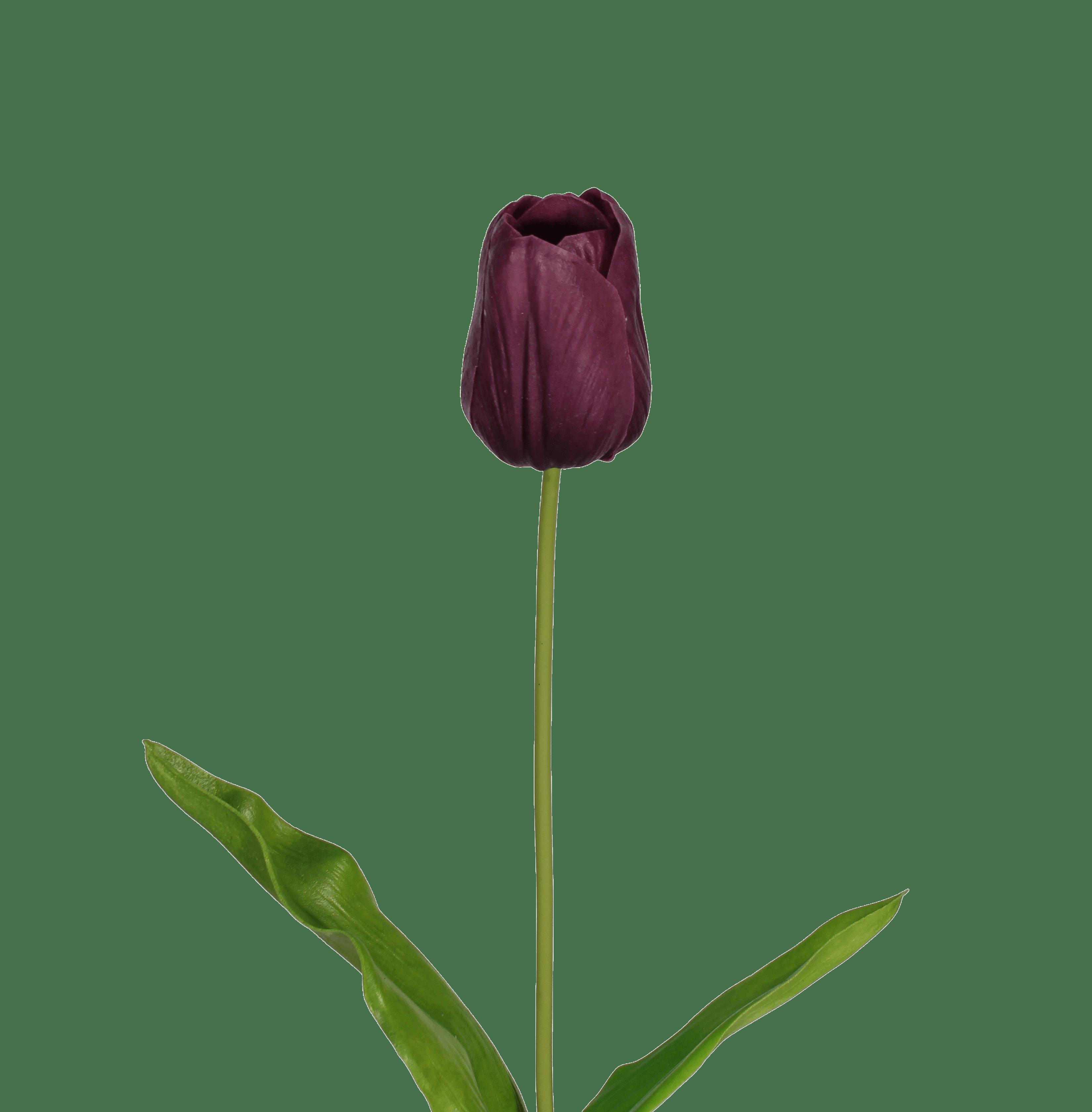 Artificial tulip stem purple