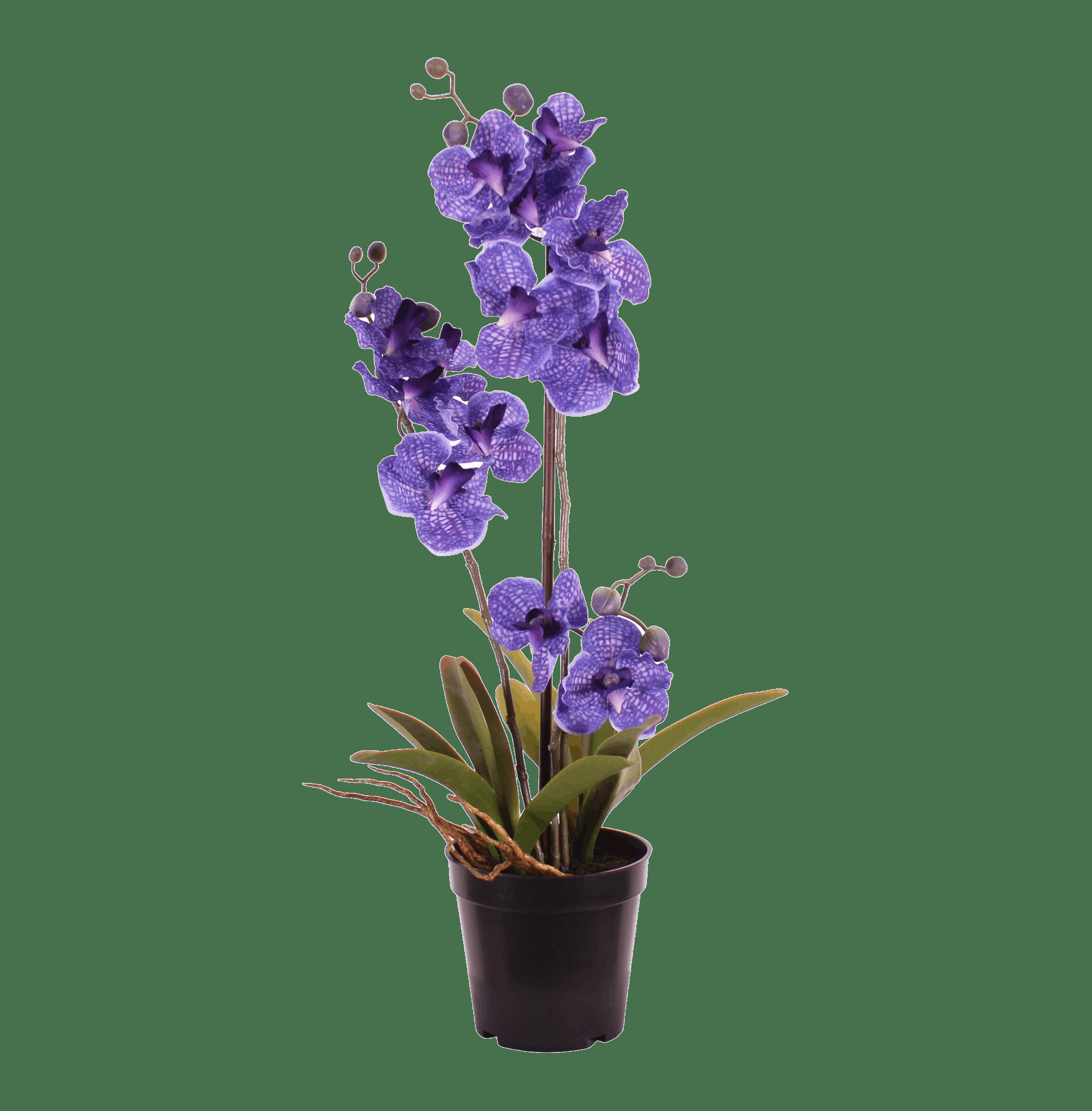 Artificial purple  vanda orchid