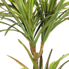 Artificial yucca plant close up